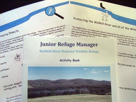 Junior Refuge Manager Activity Book